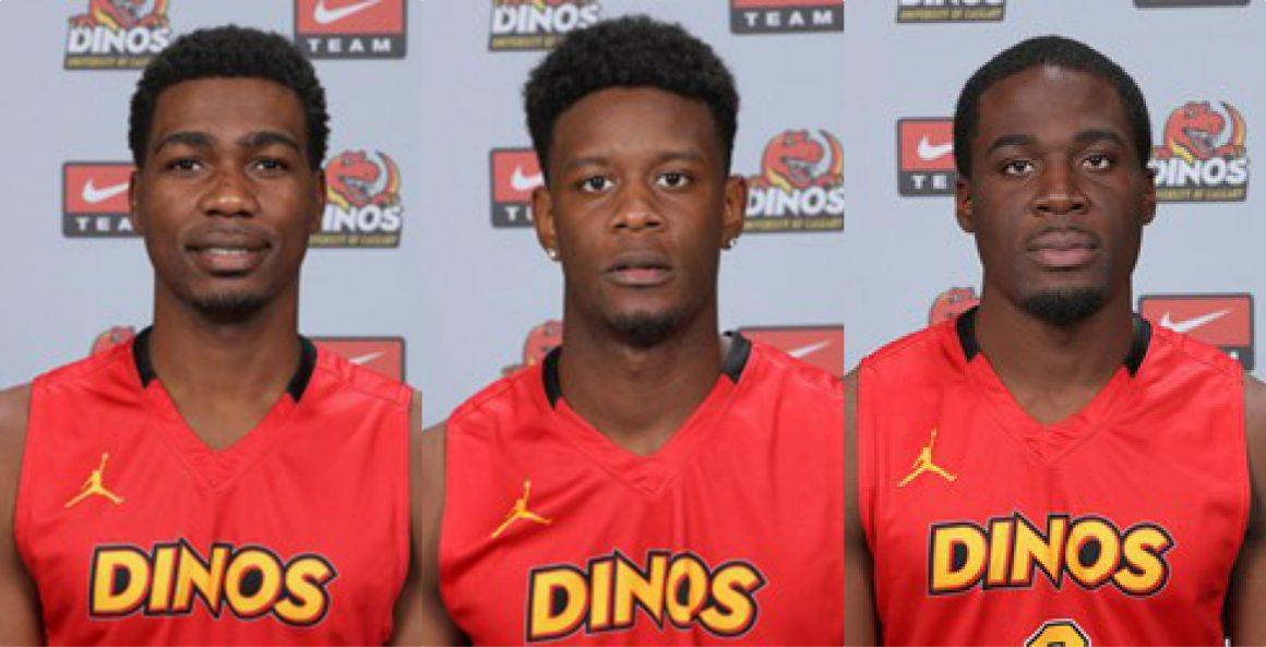 Dinos Top Three Banneer