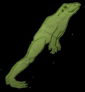 NEWS_Leon_the_frog_Smanatha_Lucy_JUMP3